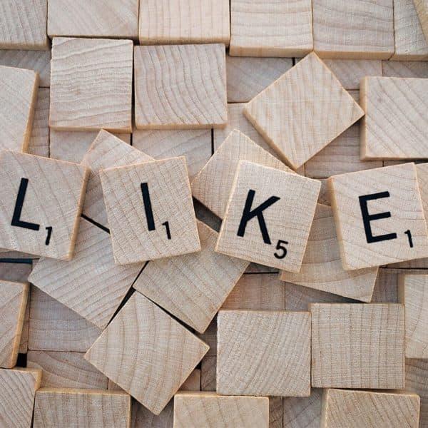 soziale Netzwerk
