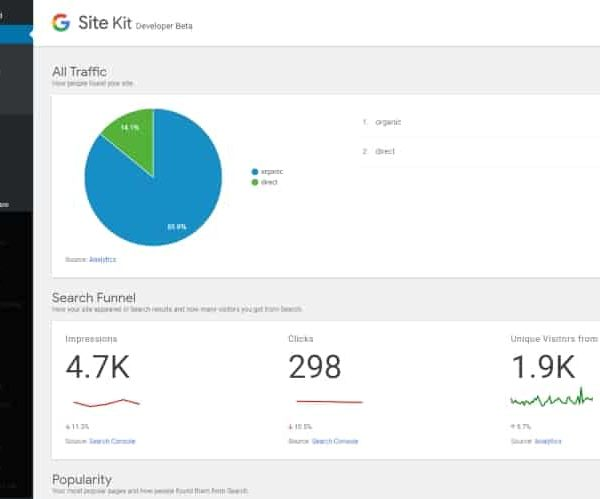 Google Site Kit Dashboard in WordPress